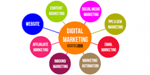 Digital Marketing Agency in Waterloo