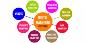 Digital Marketing Agency in Waterloo